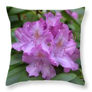 Flowering Pink Rhododendron Blossoms On A Bush Throw Pillow