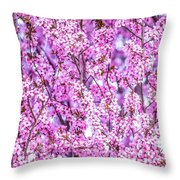 Flowering Plum Blossoms. Throw Pillow
