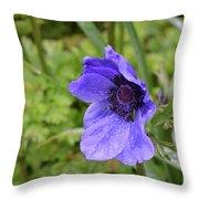 Flowering Purple Anemone Flower Blossom In A Garden Throw Pillow