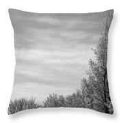 Flowering Trees Throw Pillow
