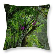 Flowering Trees Near The Path Throw Pillow