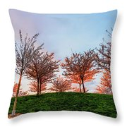 Flowering Young Cherry Trees On A Green Hill In The Park  Throw Pillow