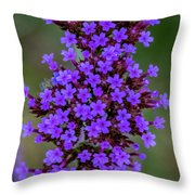 Flower_lavender 1072v Throw Pillow