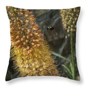 Flowers 1 Throw Pillow