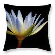 Flowers 44 Throw Pillow