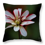 Flowers 66 Throw Pillow