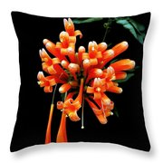 Flowers 69 Throw Pillow