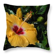 Flowers 727 Throw Pillow
