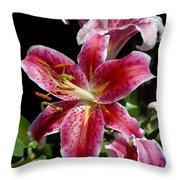 Flowers 733 Throw Pillow