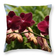 Flowers 823 Throw Pillow
