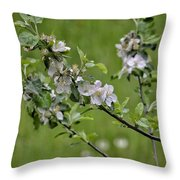 Flowers And Beauty Throw Pillow