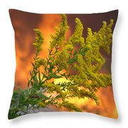 Flowers And Flames Throw Pillow