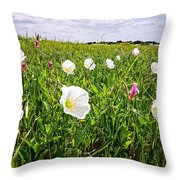 Flowers And Landscapes Along Texas Highway Roadside In Spring Throw Pillow