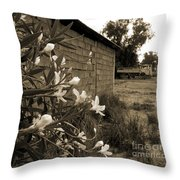 Flowers And Walls Throw Pillow