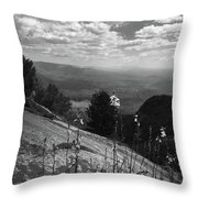 Flowers At Table Rock Overlook In Black And White Two Throw Pillow