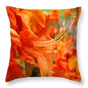 Flowers Azalea Garden Orange Azalea Flowers 1 Giclee Prints Baslee Troutman Throw Pillow