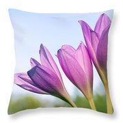 Flowers Crocuses Throw Pillow