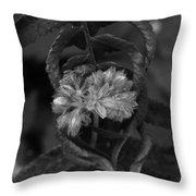 Flowers Embrace Throw Pillow
