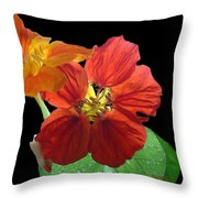 Flowers For Ebie Throw Pillow