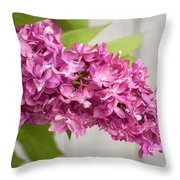 Flowers - Freshly Cut Lilacs Throw Pillow