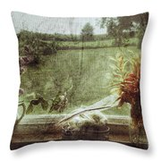 Flowers In A Window Throw Pillow