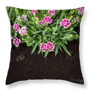Flowers In Grass Growing From Natural Clean Soil Throw Pillow