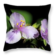 Flowers In Natural Light Throw Pillow
