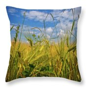 Flowers In The Wheat Throw Pillow