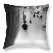 Flowers In The Window Throw Pillow