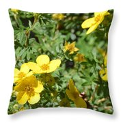 Flowers In The Yard Throw Pillow