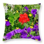 Flowers Of Bethany Beach - Petunias Throw Pillow