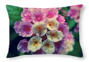 Flowers Of Boquete Panama Throw Pillow