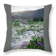 Flowers Of Ocotilla Throw Pillow
