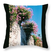 Flowers Of Panzano Photograph Throw Pillow