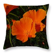 Flowers Of The Andes Throw Pillow
