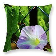 Flowers On The Fence 1 Throw Pillow