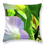 Flowers On The Fence Throw Pillow