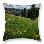 Flowers On The Hillside Throw Pillow