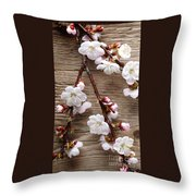 Flowers On Wall Throw Pillow
