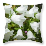 Flowers With Droplets 2 Throw Pillow