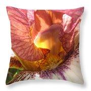 Flowerscape Pink Iris One Throw Pillow