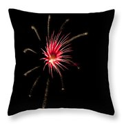 Flowerworks #12 Throw Pillow