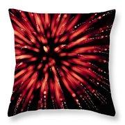 Flowerworks #17 Throw Pillow