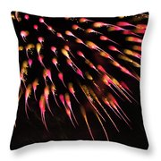Flowerworks #39 Throw Pillow