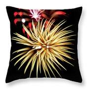 Flowerworks #40 Throw Pillow