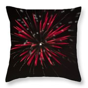 Flowerworks #7 Throw Pillow