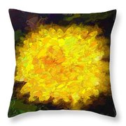 Flowery Acceptance In Abstract Throw Pillow
