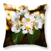 Flowery Sunset Throw Pillow