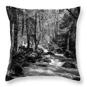 Flowing Creek Throw Pillow