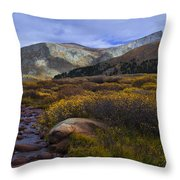 Flowing From Bierstadt Throw Pillow by Barbara Schultheis
